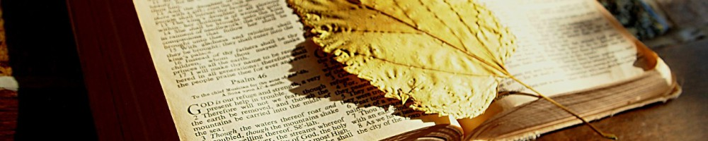 bible-feuille