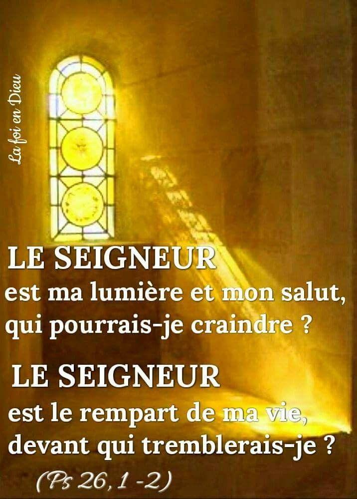 Méditation du jour : vendredi 4 décembre - Diocèse de Metz